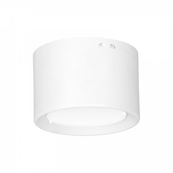 DOWNLIGHT LED white 0893 Luminex