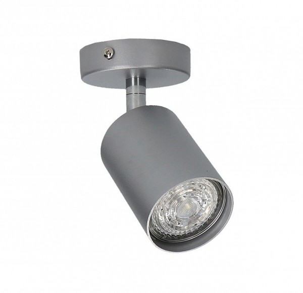 EYE SPOT silver 1 6138 Nowodvorski